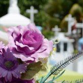 Volno na pohřeb